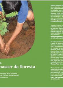 Pamine: O Renascer da Floresta