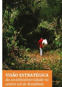 Visão Estratégica da Sociobiodiversidade no Centro Sul de Rondônia