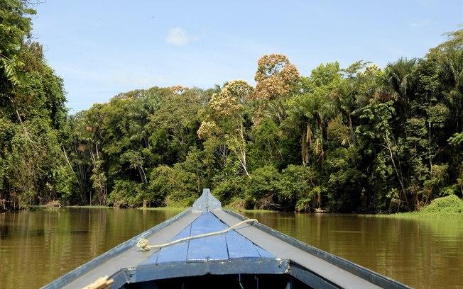 No Dia da Amazônia, conheça o trabalho da Ecam