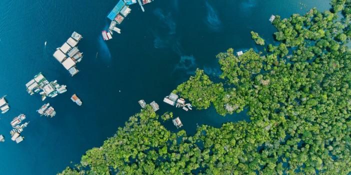 [BLOG] Vozes da Amazônia, por Muryel Arantes