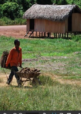 Gestão Socioambiental de Territórios Protegidos em Sobreposição na Amazônia Brasileira
