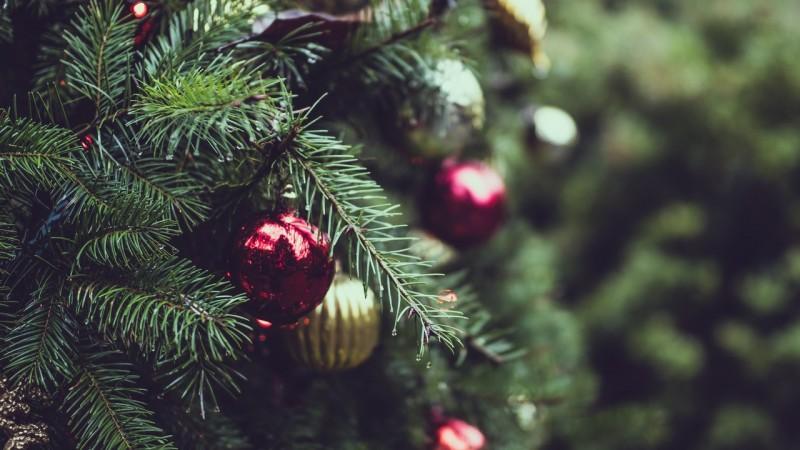 Diversidade no Natal? Conheça os países que comemoram de um jeito inusitado