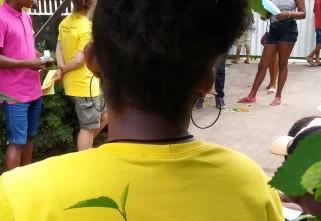 Programa de Estágio Quilombola amplia ações e seleciona equipe para trabalho voluntário