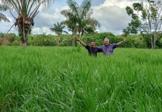 Boas práticas de pecuária sustentável serão destaque em Dia de Campo