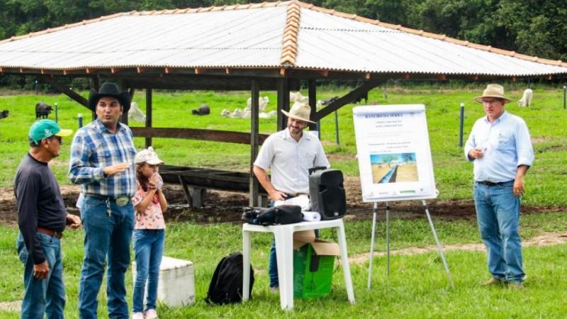Conheça o Projeto Pecuária Sustentável