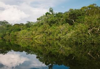 Amazônia Legal e a atuação do Compartilhando Mundos