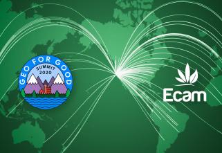 Em evento mundial, brasileira apresenta estudo sobre situação dos territórios tradicionais diante da pandemia