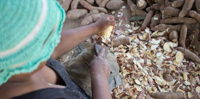 Quilombolas realizam mapeamento de ações e instituições que incentivam agricultura familiar