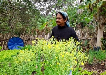 MINAS GERAIS: BOAS PRÁTICAS DA AGRICULTURA FAMILIAR QUILOMBOLA