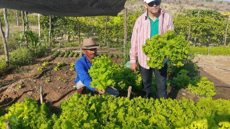 PARAÍBA: BOAS PRÁTICAS DA AGRICULTURA FAMILIAR QUILOMBOLA