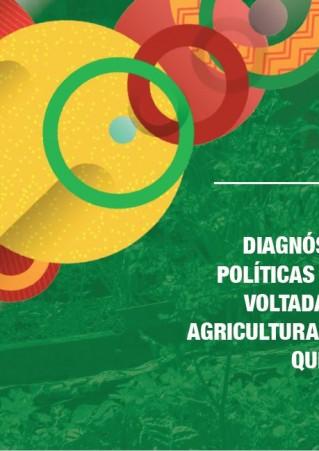 Diagnóstico das políticas públicas voltadas para a agricultura familiar quilombola
