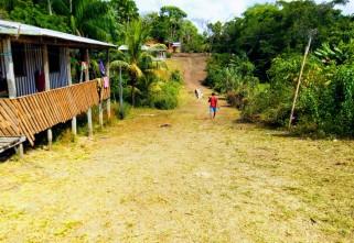 Estudo mostra realidade das ações de produtividade nas comunidades quilombolas do Amapá