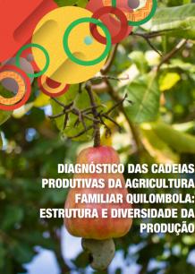 Diagnóstico das cadeias produtivas da agricultura familiar quilombola: estrutura e diversidade da produção
