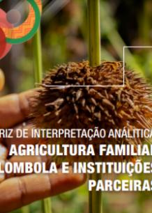 CONAQ – MATRIZ: AGRICULTURA FAMILIAR QUILOMBOLA E INSTITUIÇÕES PARCEIRAS