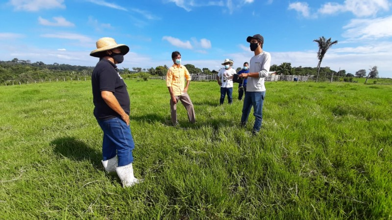 Programa Pecuária Sustentável atende mais de 40 fazendas no Pará